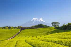 静岡県でファクタリング ファクタリングなら最短即日で資金調達可能