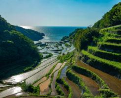 佐賀県でファクタリング 最短即日で資金調達できる効果的な方法